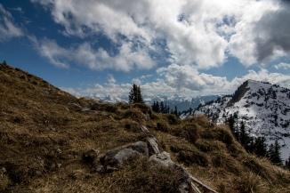 Im Hintergrund hat man immer die Berner Alpen.