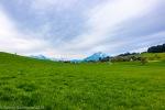 Küssnacht_Luzern-13