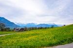 Küssnacht_Luzern-15