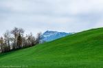Küssnacht_Luzern-34