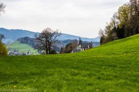 Landschaft und Schloss Meggenhorn